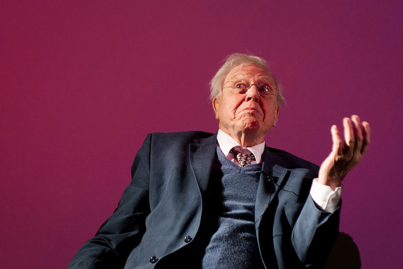 David Attenborough takes the 'People's Seat' at the COP24 Climate Talks in Poland