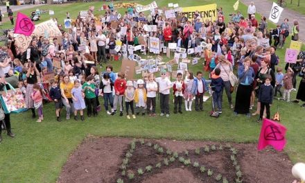 Council's Response to the Climate Emergency – a community perspective