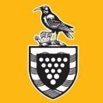 Council Action Plans (Unitary & District)